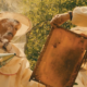 Lepsi Honey